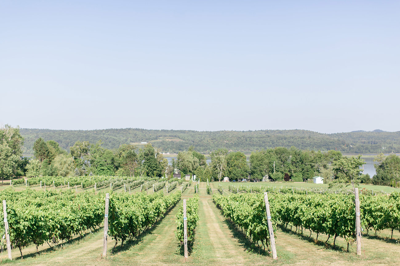 Dunhams Run Estate Winery 1