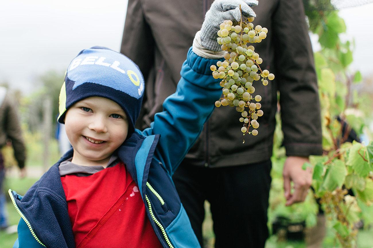 Dunhams Run Estate Winery 2